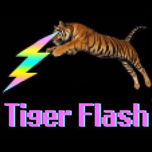 Concert de Tiger Flash