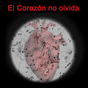 Conferència teatralitzada 'El corazón no olvida'
