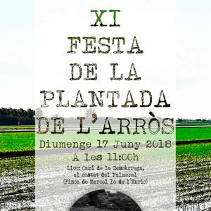 XI Festa de la Plantada de l'arròs - L'Ampolla 2018