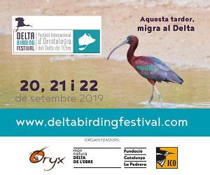 Delta Birding Festival 2019