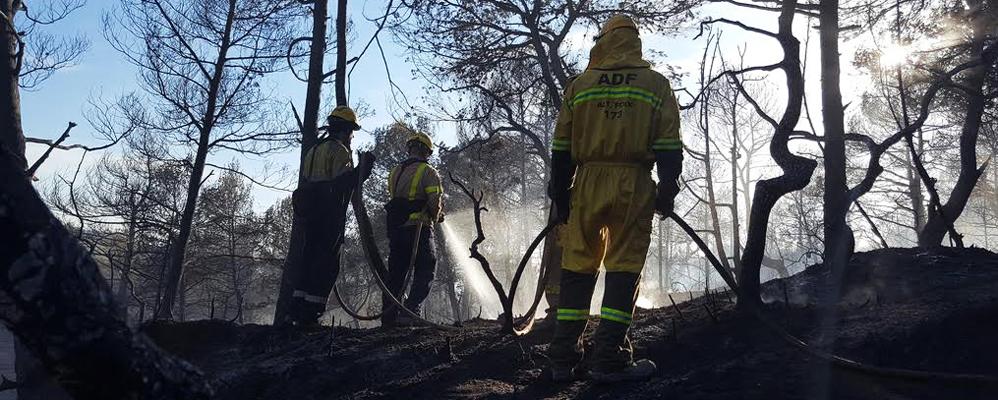 Voluntaris de les ADF en un incendi al Penedès