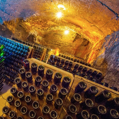 Caves Gibert - Bages Terra de vins