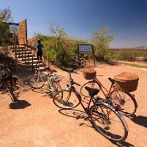 Bicicletes pel Delta de l'Ebre