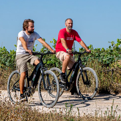 Rovellats – Descobreix les vinyes amb bicicleta elèctrica
