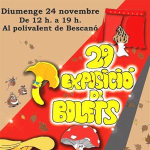 29a Exposició de Bolets a Bescanó, 2019