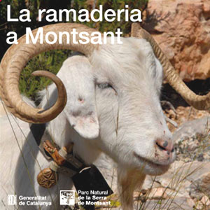 Cicle de xerrades sobre patrimoni cultural i històric de Montsant, 2019