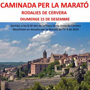 Caminada per La Marató de TV3 a Cervera