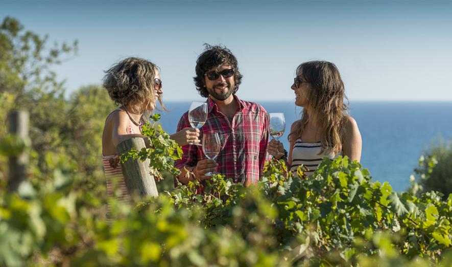 Una copa entre vinyes i a la vora del mar