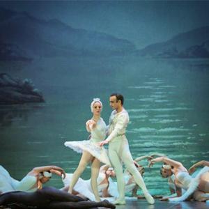 Espectacle 'El llac dels cignes' de Txaikovski, del Ballet Clàssic de Sant Petersburg d'Andrey Batalov
