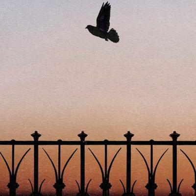 Story walker 'Que se la mengin els coloms (i la portin a casa)' de Glòria Granell Barberà