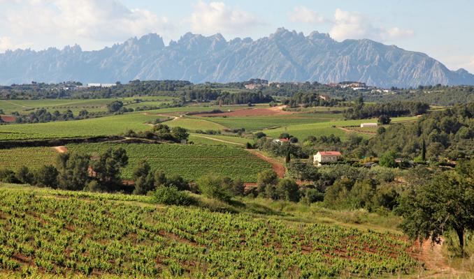 Vistes de Montserrat des de Sant Llorenç d'Hortons