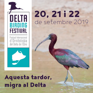 Delta Birding Festival - MónNatura Delta de l'Ebre 2019