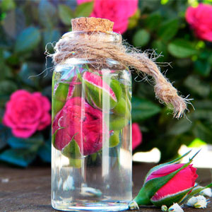 Destil·lació dels pètals de rosa