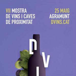 DVins, Mostra de Vins i Caves de proximitat a Agramunt, 2019
