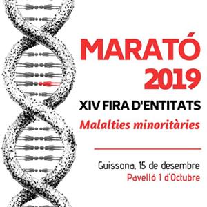 14a edició de la Festa d'Entitats per La Marató de TV3 de Guissona, 2019