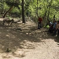 Un instant de la visita de natura a MónNatura Pirineus