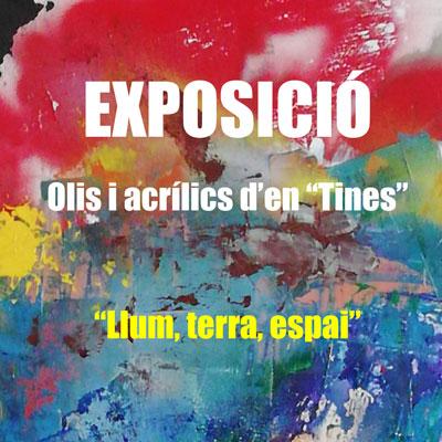 Exposició 'Llum, terra, espai' - Tines