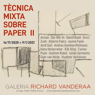 Exposició 'Tècnica mixta sobre paper II' a la Galeria Richard Vanderaa