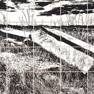 Exposició 'Lluites limítrofes' de l'artista garrotxí Adrià Gamero