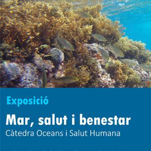 Exposició 'Mar, salut i benestar' de la Càtedra Oceans i Salut Humana