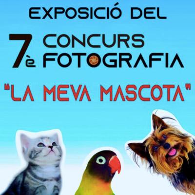 Exposició 'La meva mascota', Col·legi de Veterinaris de Tarragona. 2021