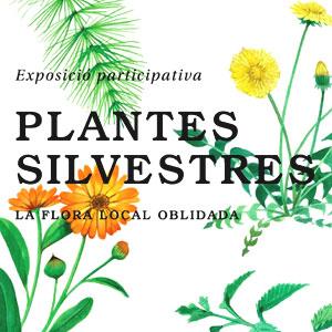 Exposició 'Plantes Silvestres' al Centre Cívic de Porqueres, 2019