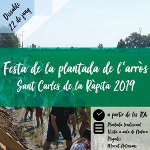 Festa de la plantada de l'arròs - La Ràpita 2019