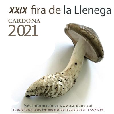 XXIX Fira de la Llenega - Cardona 2021