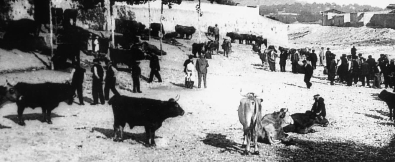 Fira de bestiar a la Riera de la Bisbal, segle XIX