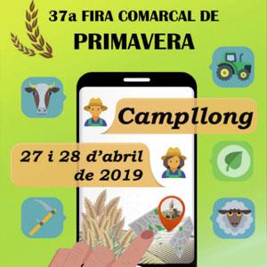 37a Fira Comarcal de Primavera de Campllong