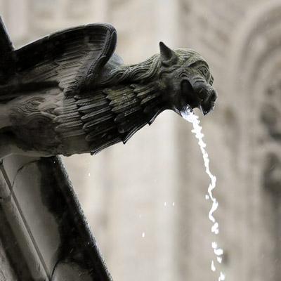L'aigua oculta al Turó, Gàrgola, Seu Vella