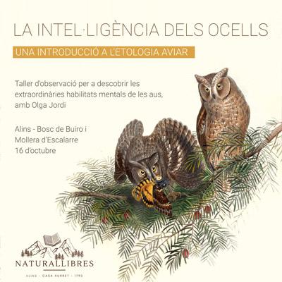 Taller NL 'La intel·ligència dels ocells', Natura Llibres, 2021