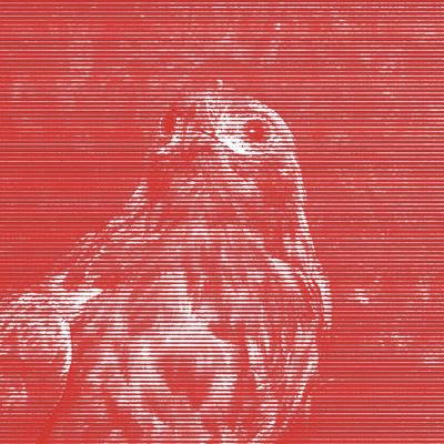 Exposició 'Línies vermelles. La censura en la col·lecció de Tatxo Benet' a la Panera, Lleida