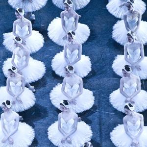 Dansa en streaming 'El llac dels cignes' de l'Òpera de París