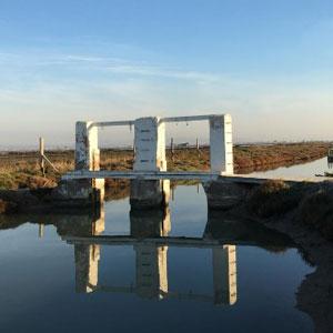 Visita 'Lo Delta a la Cassola' - MónNatura Delta de l'Ebre 2019