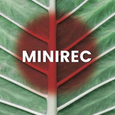 MiniREC, Festival Internacional de Cinema de Tarragona, REC, 2020