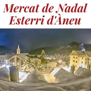 Mercat de Nadal a Esterri d'Àneu, 2019