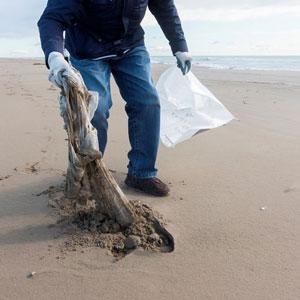 Neteja de platja - Hivern