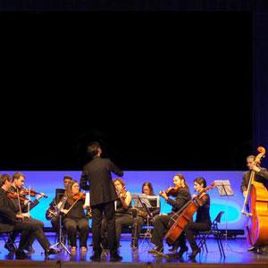 Orquestra de Cambra de Tortosa (OCTO)