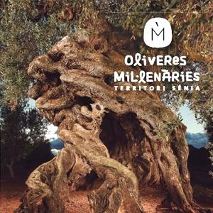 Exposició 'Oliveres mil·lenàries. Territori Sénia'
