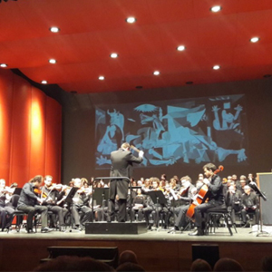 Orquestra de Cambra de Vic