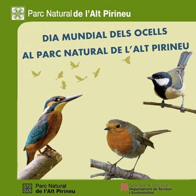 Dia Mundial dels Ocells al Parc Natural de l'Alt Pirineu, 2020