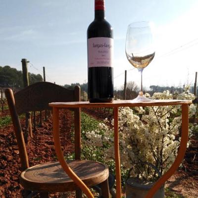 Pedalant entre vinyes - Bages Terra de Vins