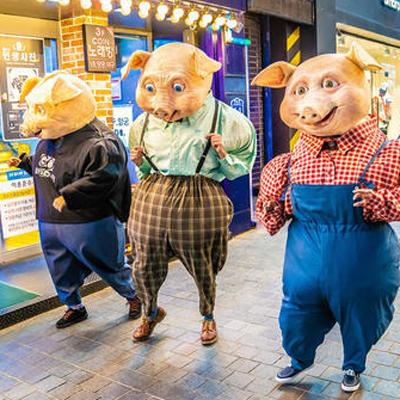 Espectacle 'PIGS' - Campi qui pugui