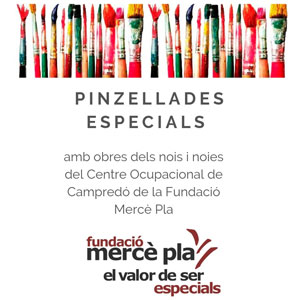 Exposició 'Pinzellades especials' - Fundació Mercè Pla