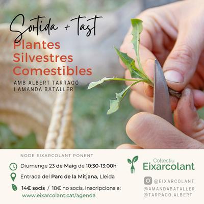 Sortida 'Herbes Silvestres Comestibles de la Mitjana, del camp a la taula', Eixarcolant