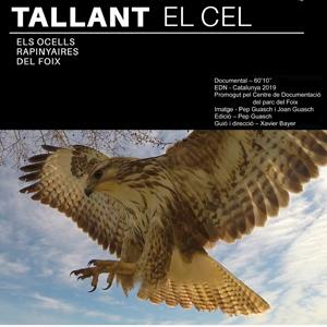 'Tallant el cel', el documental sobre els ocells rapinyaires del Foix