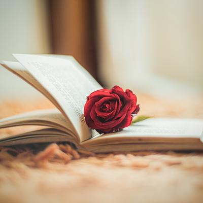 Sant Jordi, Rosa, Llibre