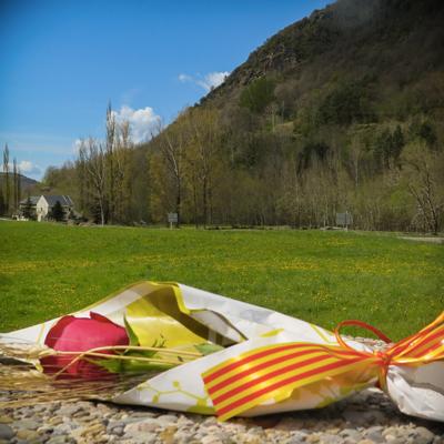 Sant Jordi, Rosa, Pirineus, Muntanya