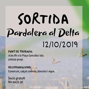 Sortida pardalera al Delta - L'Ampolla 2019